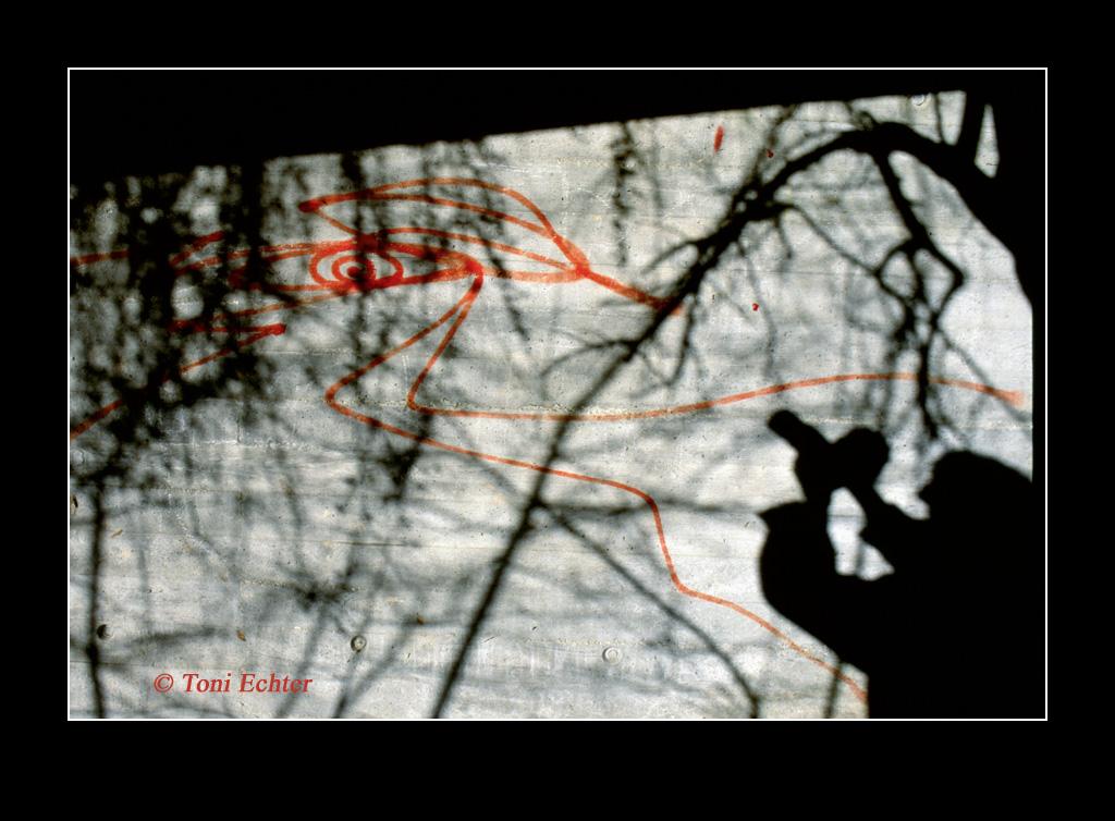 flüchtendes Auge 1997