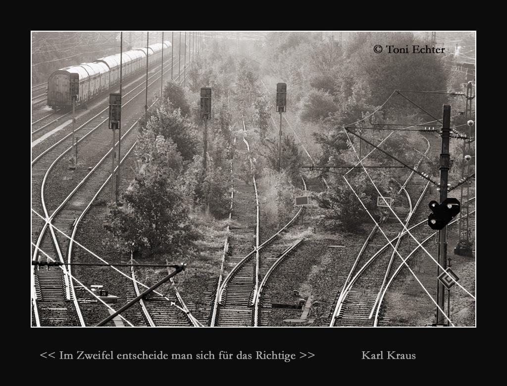 zweifel-richtig-2010
